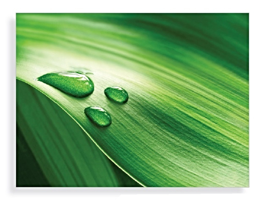 DEW ON LEAF GLASS ART  60x80